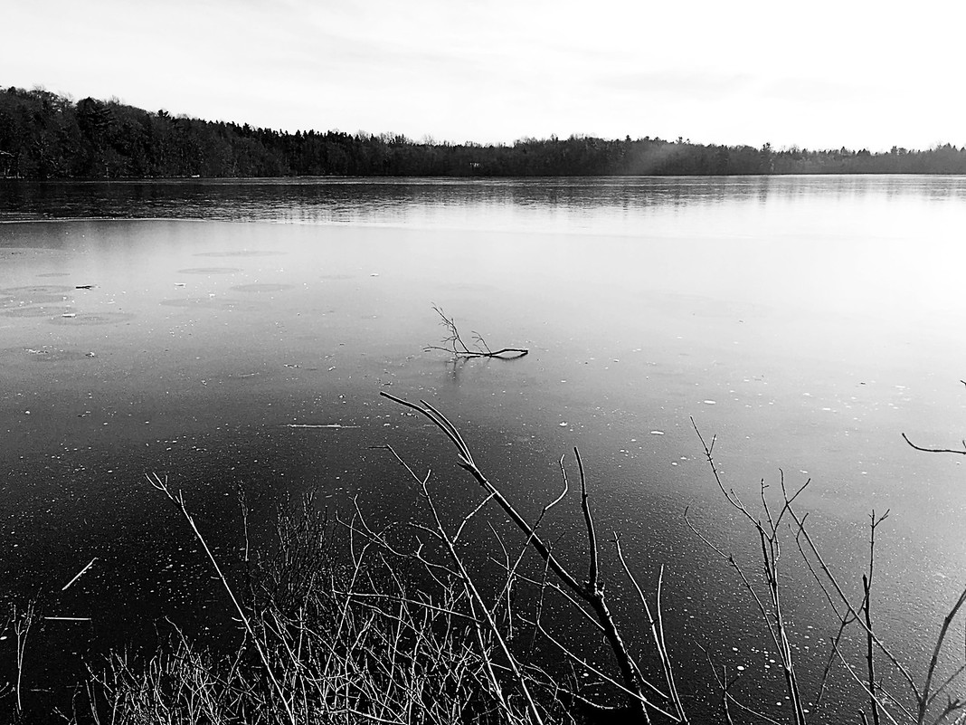 15. Frozen Lake